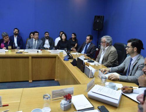 El próximo 31 de julio y 1 de agosto se llevará a cabo la primera reunión entre la Comisión y la Presidenta de la CIDH, Esmeralda Arosemenade Troitiño